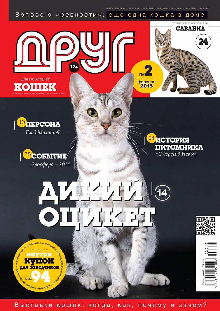 Поздравление для любителя кошек
